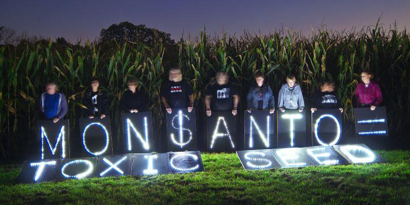 #Monsanto 's #GMO scientist shill exposed. The Ecologist http://t.co/NtuVhgMWE1 http://t.co/w2f2zti6Lt