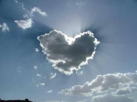 @BonniedaWestie You'll be in our ❤️ forever.   #BonniesPorch http://t.co/ejUM52pXSX