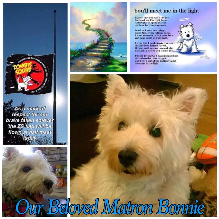 We loved @BonniedaWestie deeply & take some comfort knowing we'll see her again OTRB. Group hug #BonniesPorch #ZSHQ http://t.co/tNsu5MO5nf
