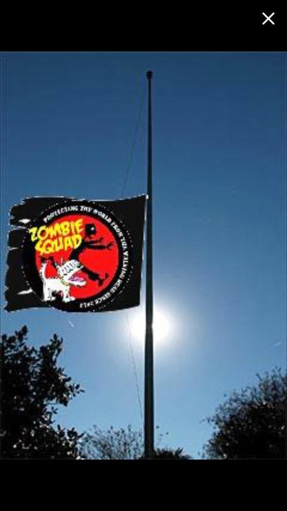 We are flying the ZS flag at half mast for our dear brave matron #ZSHQ @BonniedaWestie http://t.co/l5XMT5tjSl