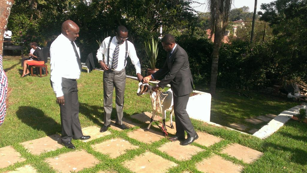 Mutahi Ngunyi hands over a white goat to LSK CEO Apollo Mboya as a sign of apology over the tweets against Luos. http://t.co/rW8awzQNaS