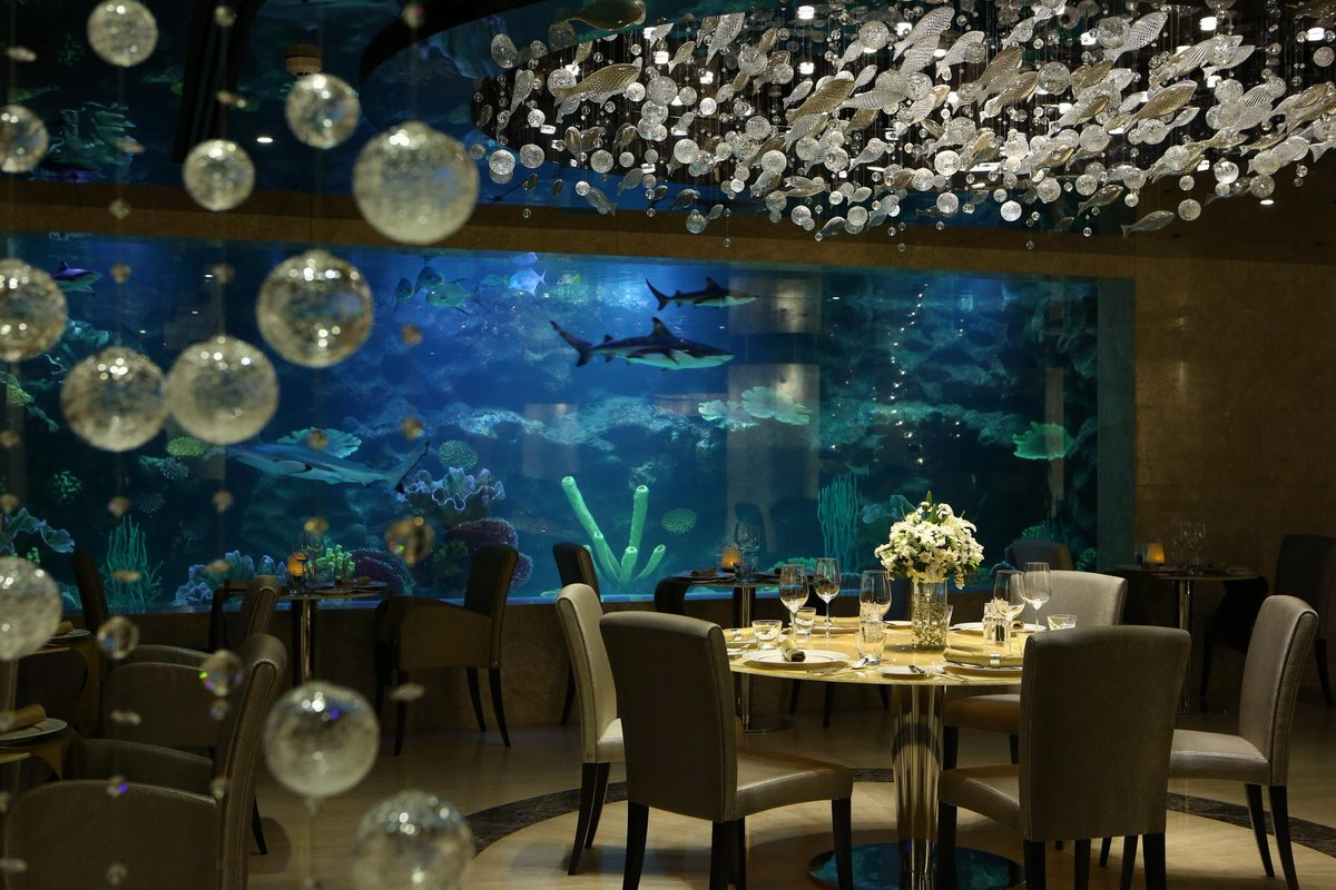 What are your plans for this #Friday night?  Join #Buffet at restaurant #Oceana! Details: http://t.co/BuJkKTvBqC http://t.co/R9s0oYtUTz