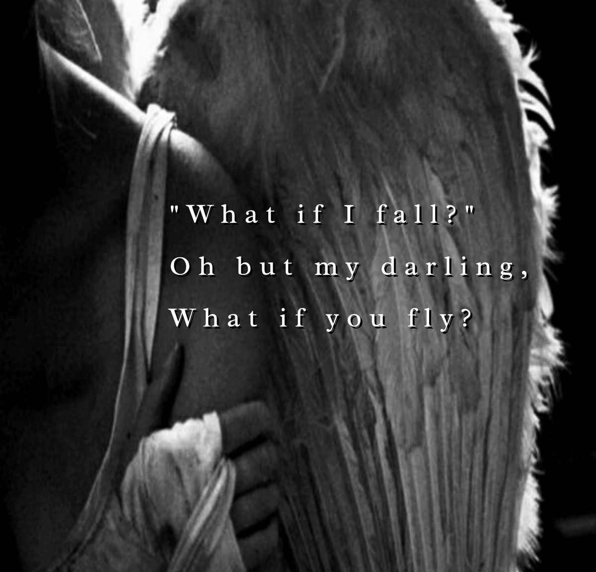 The Quote Thief On Twitter What If I Fall Oh But My Darling What