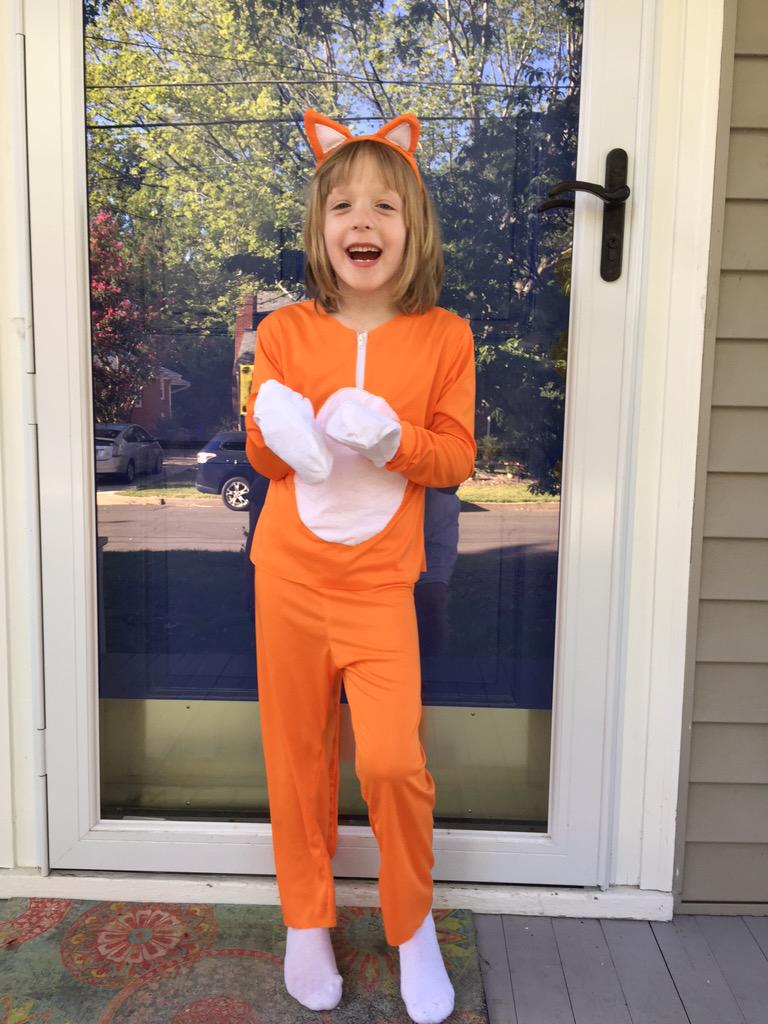 Catch!!! lost stampy cat costume