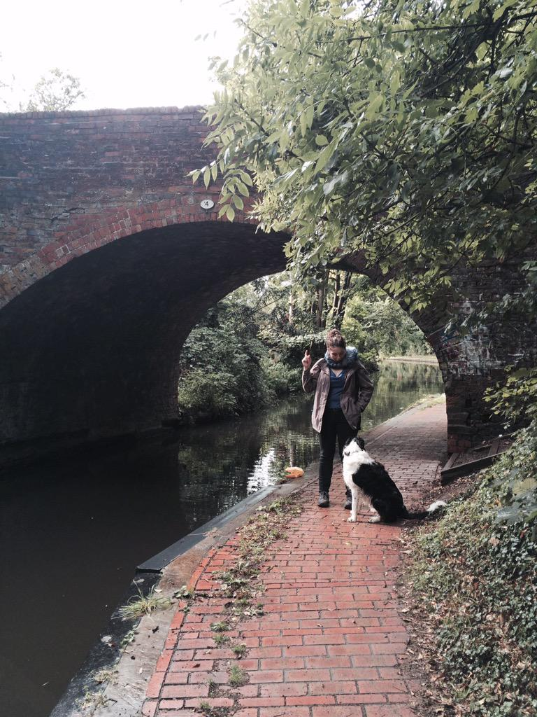 It begins #walkingtheshroppie @CanalRiverTrust @NWMuseum. Warstock lane bridge no 4 http://t.co/lNq48V5g0i