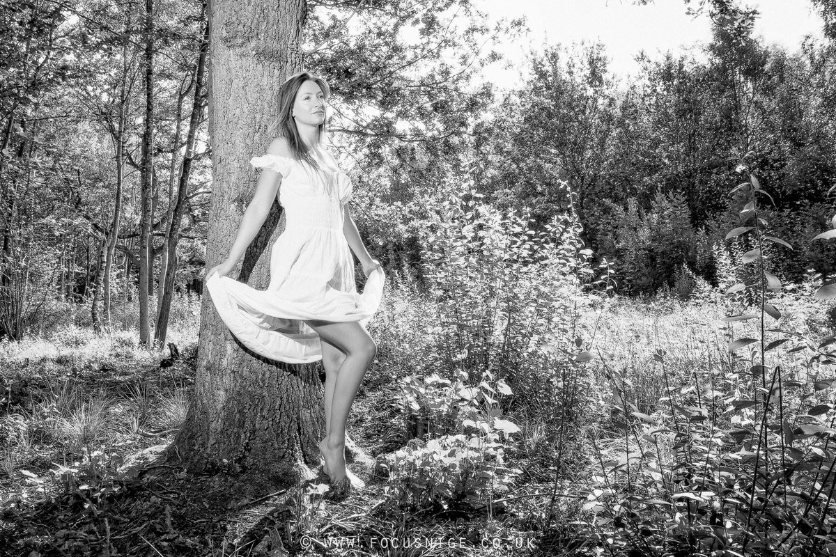Focusnige On Twitter The Tree Claire Topaz Photographed In