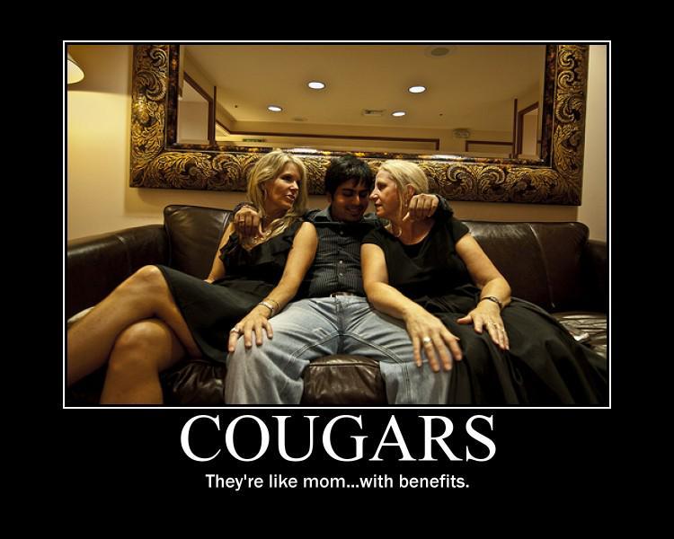 cougar sex slang acronyms