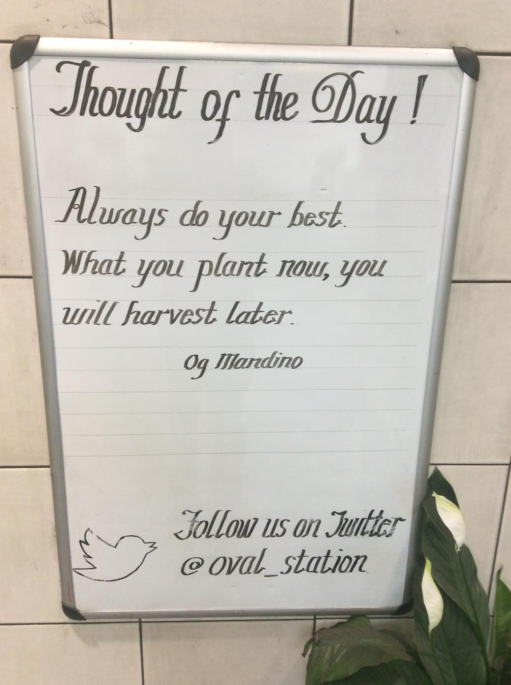 In Pictures: Wisdom On The London Underground