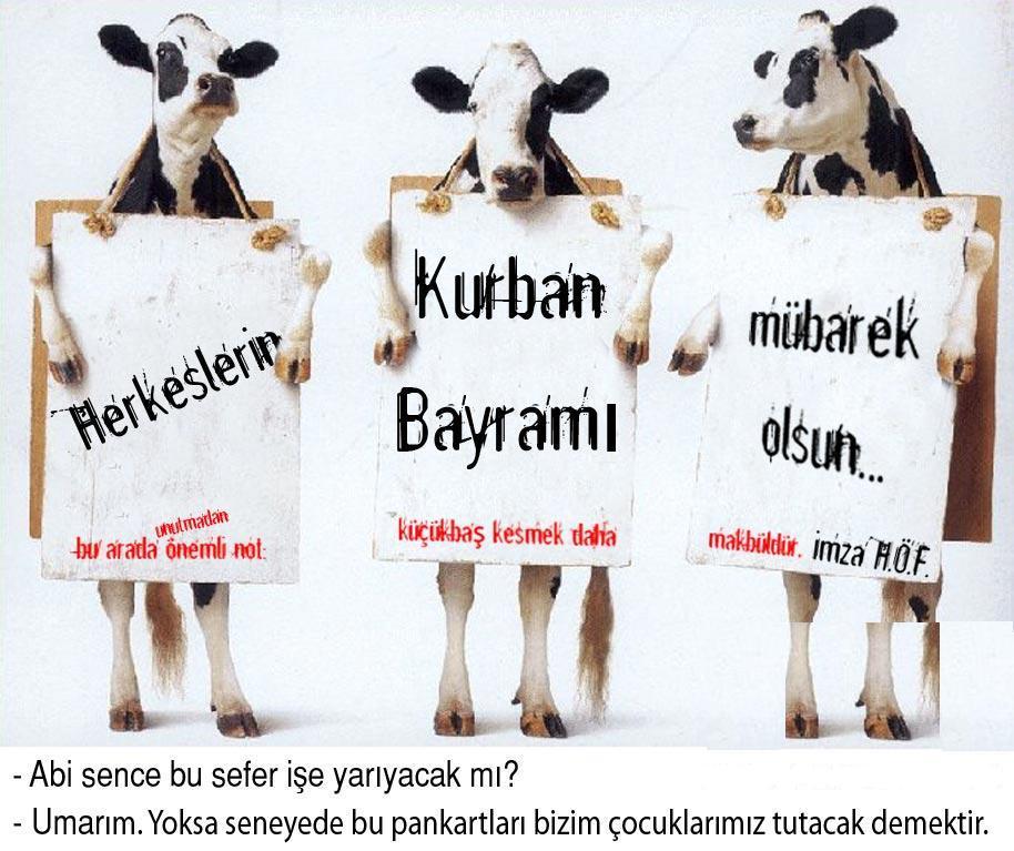 Поздравления на турецком байрам