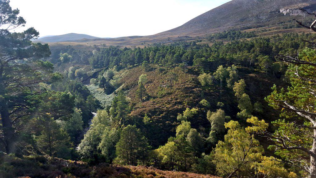 besplatna web mjesta za pronalaženje inverness