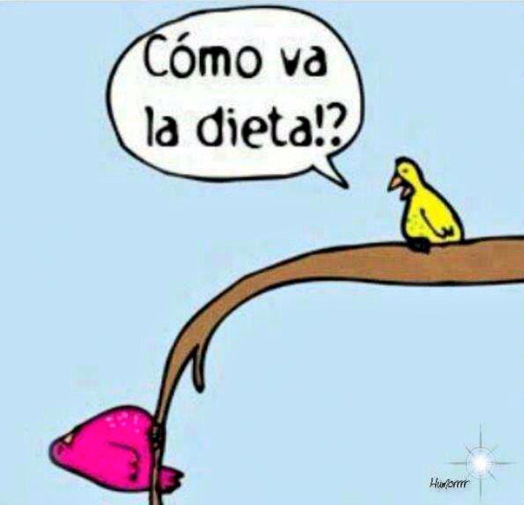 y+como+va+la+dieta