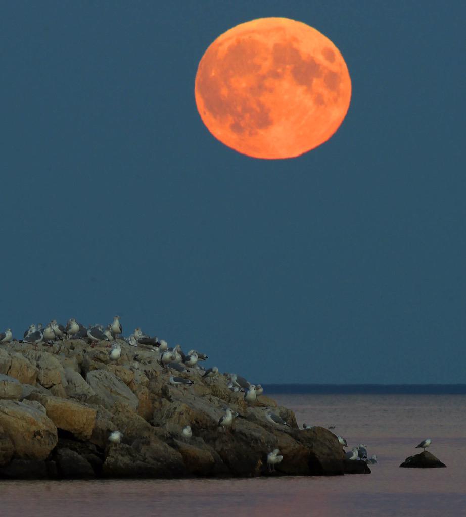 Super Moon Rises Over Lake Winnipeg In Gimli Manitoba Canada Sunday