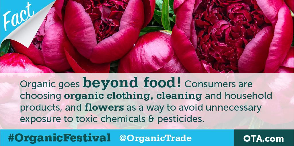 DYK that #organic goes beyond food? RT the fact to win Organic Pillows from @Naturepedic #OrganicFestival http://t.co/OJDT61iDvx