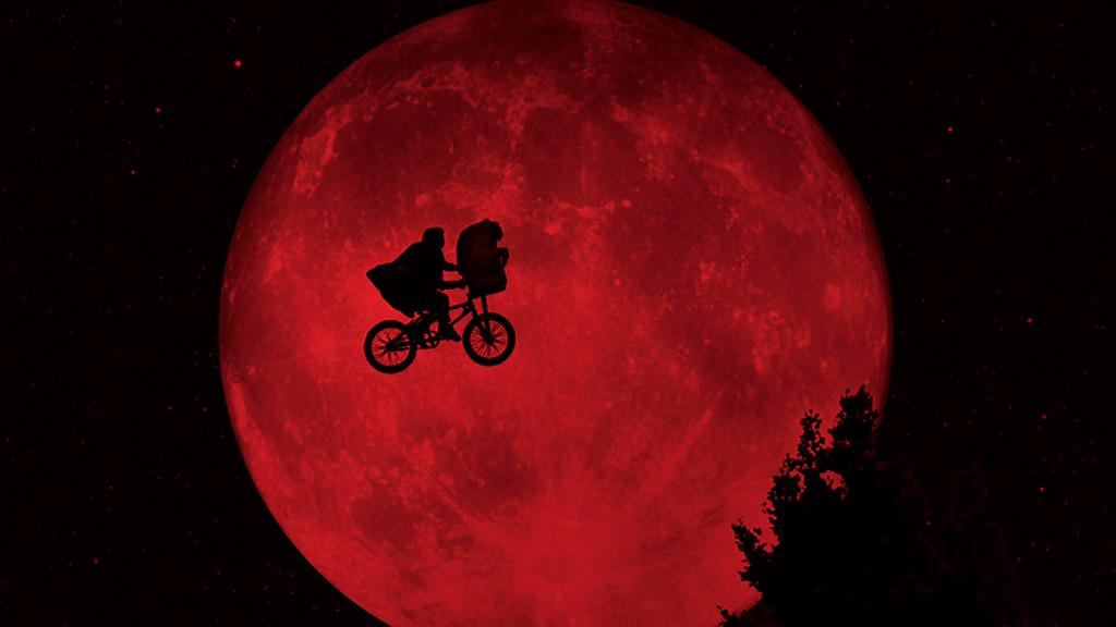 This #SuperBloodMoon does seem different somehow.... http://t.co/xEMyzeUoVt