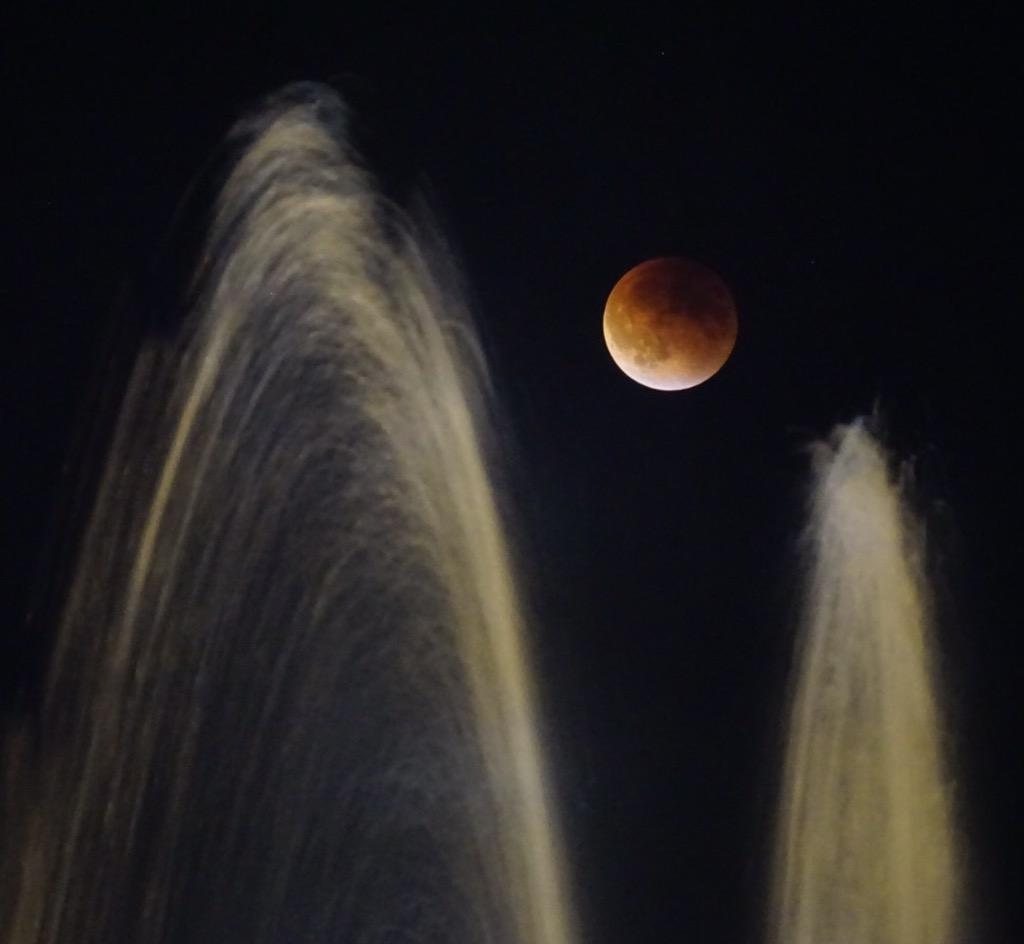 Was fun to watch the play of the @seattlecenter fountain and the #SuperBloodMoon tonight. http://t.co/PVX5bbChv7