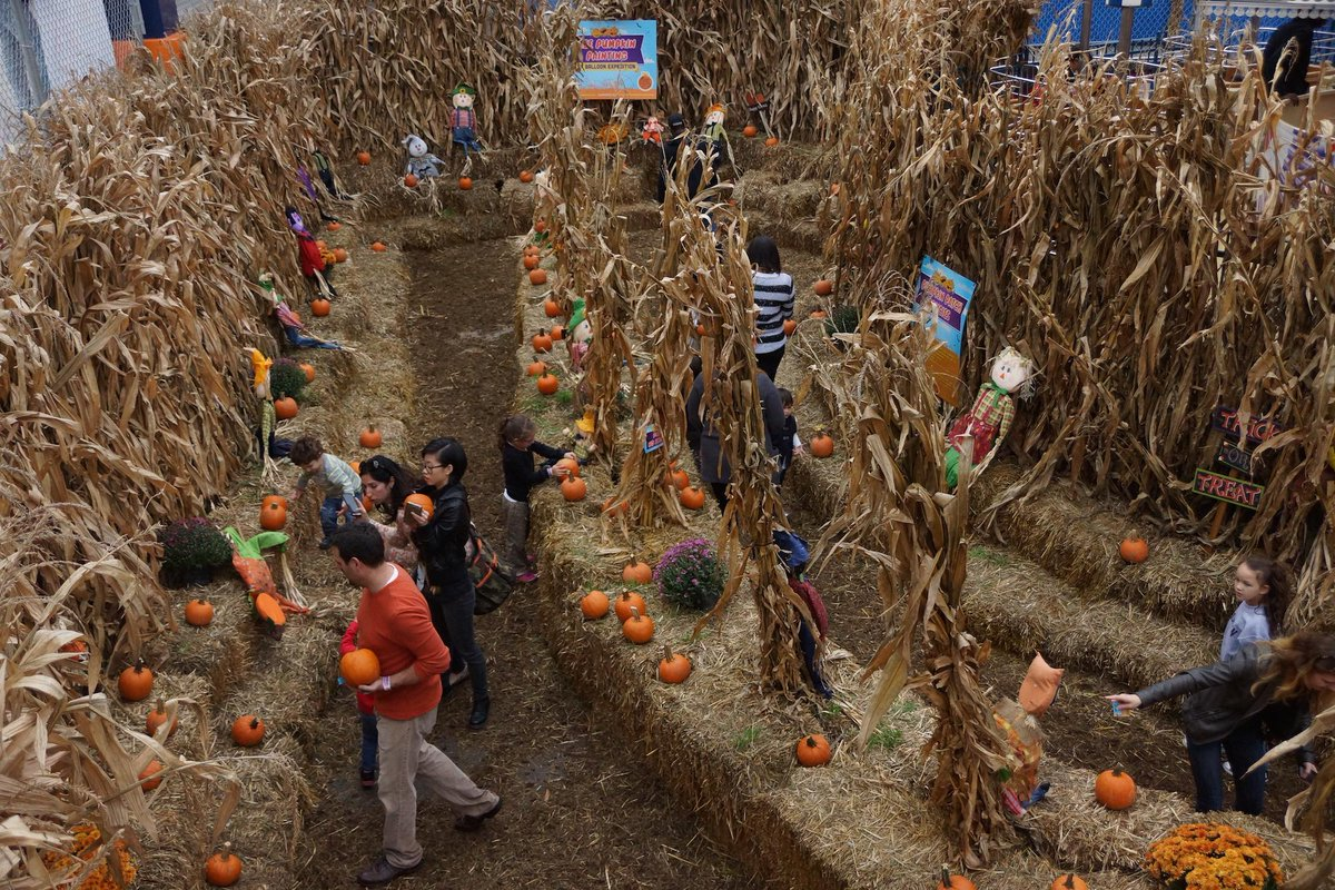 luna park nyc on twitter tbt to the pumpkin patch pick paint your own during halloween harvest beginning sept 26 httptcoizhsdn5hhk