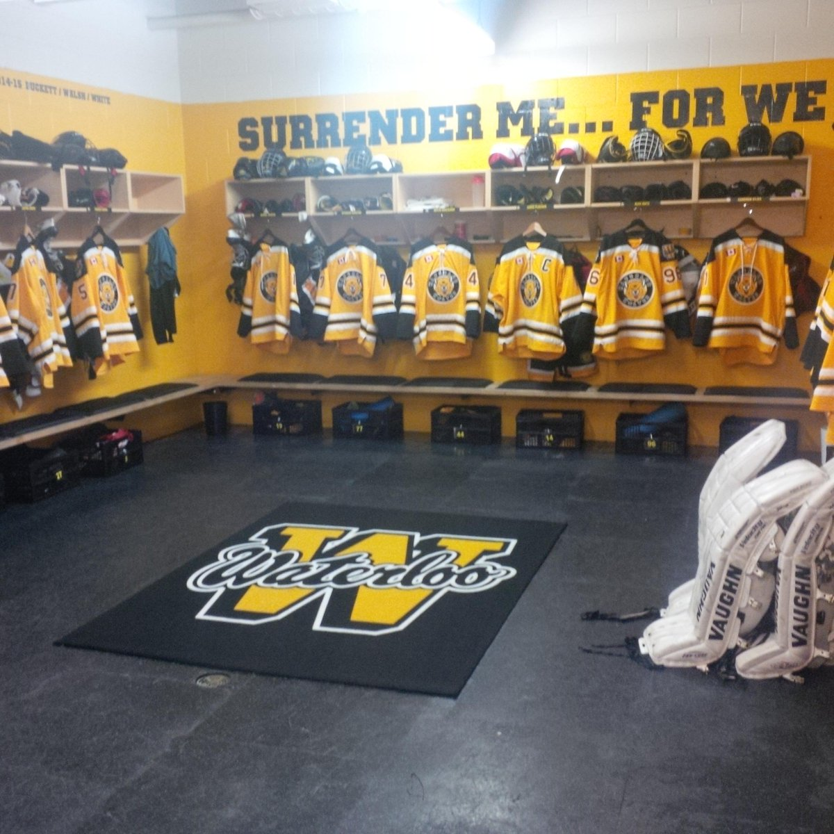 Waterloo wolves midget