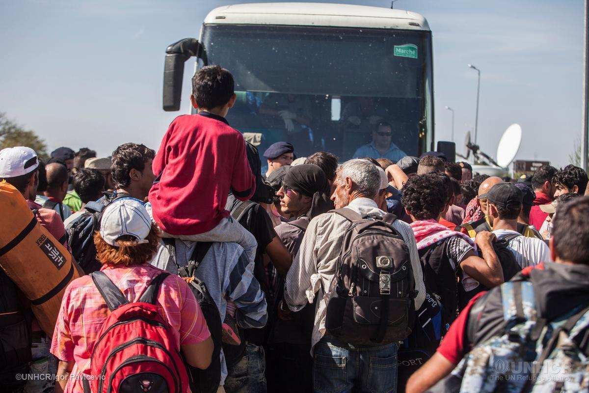Migrant crisis: Refugees walk final miles through Hungary