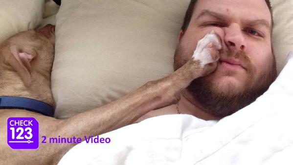 repair muscle damage lipitor zocor