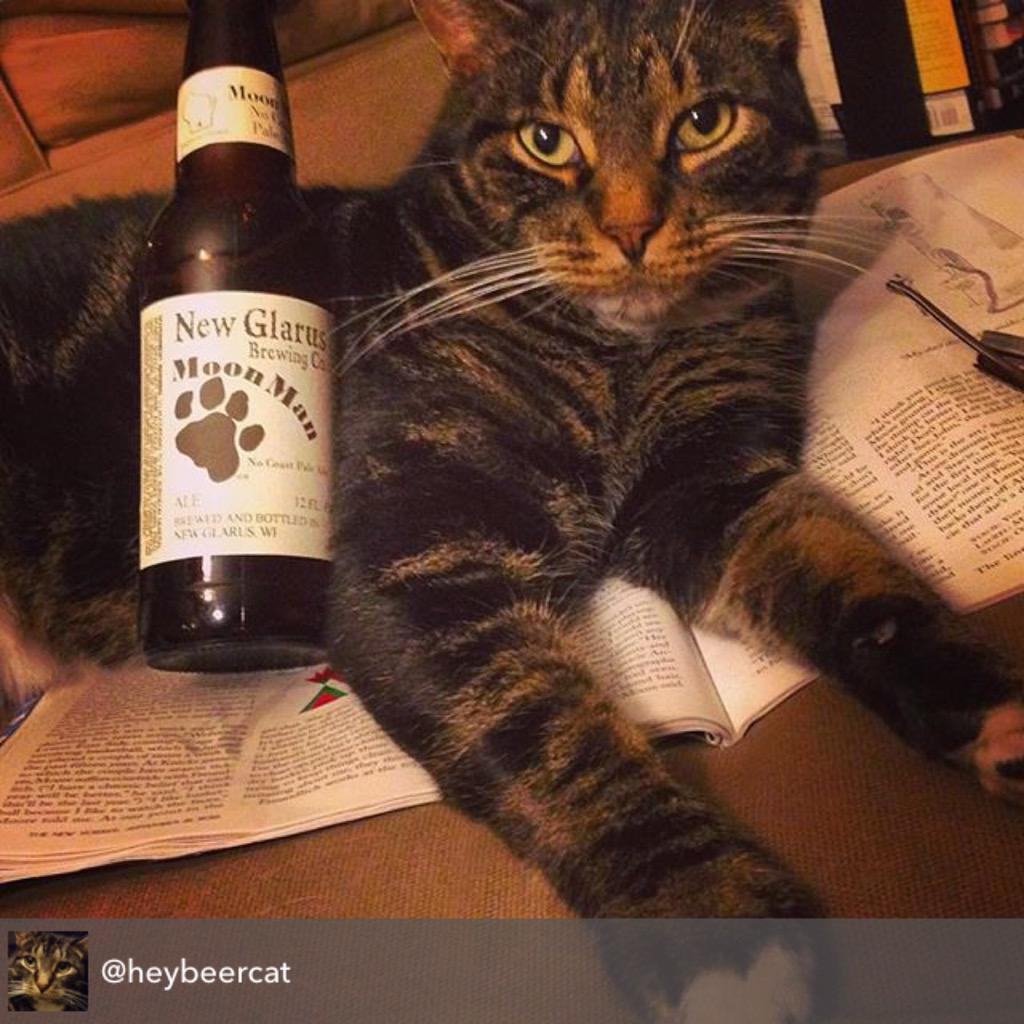 Moon Man: a tasty pale ale named after a cat, and purrfect for #beercats every where. Happy Caturday! http://t.co/CMYcJQOyMb