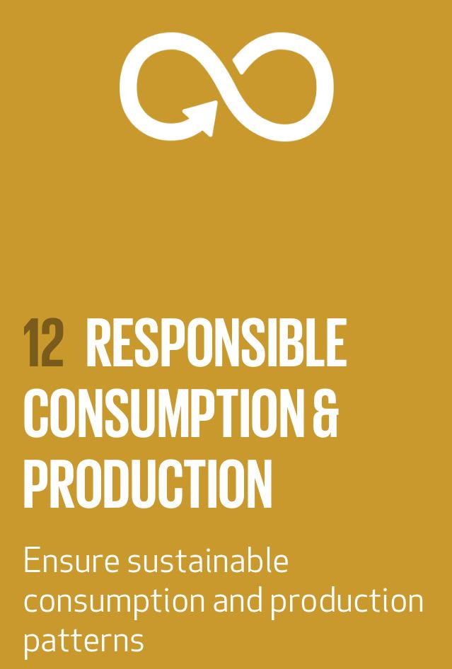 sustainable consumption and production pdf