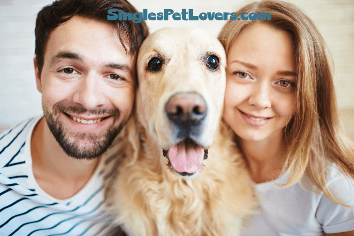 dating sites for pet lovers Dog owners', makes online dating a walk in the park for animal lovers holidog, a london-based online dog and cat boarding site which is.