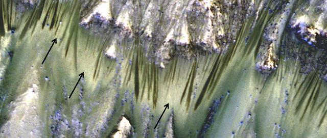 """""""Abbiamo trovato sali idrati"""" e non tracce di acqua su Marte."""