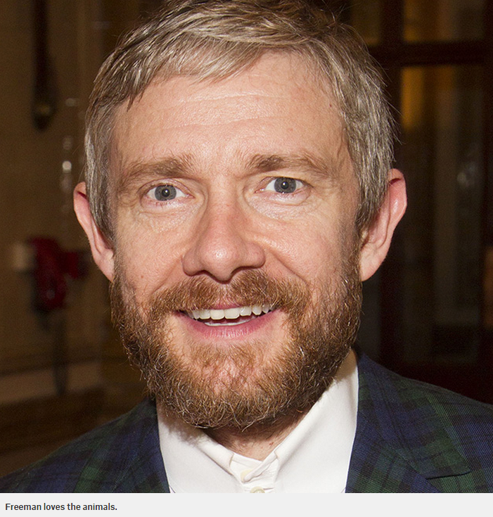 RT @MetroUK: Martin Freeman wants David Cameron to ban wild animal acts in circuses http://t.co/zq7AJfmeGA http://t.co/AvRy1lKbV9
