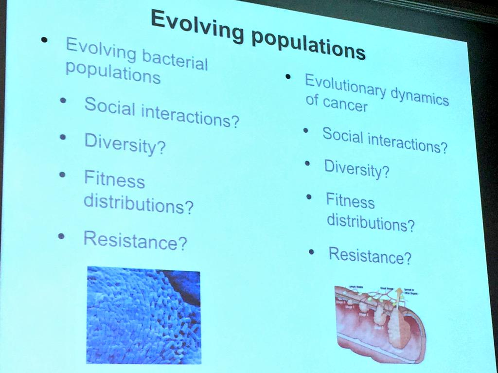 .@EvolTheoArne Highlights the parralells between bacterial &  cancer evolution #CEST15 http://t.co/O47BJ67EcP