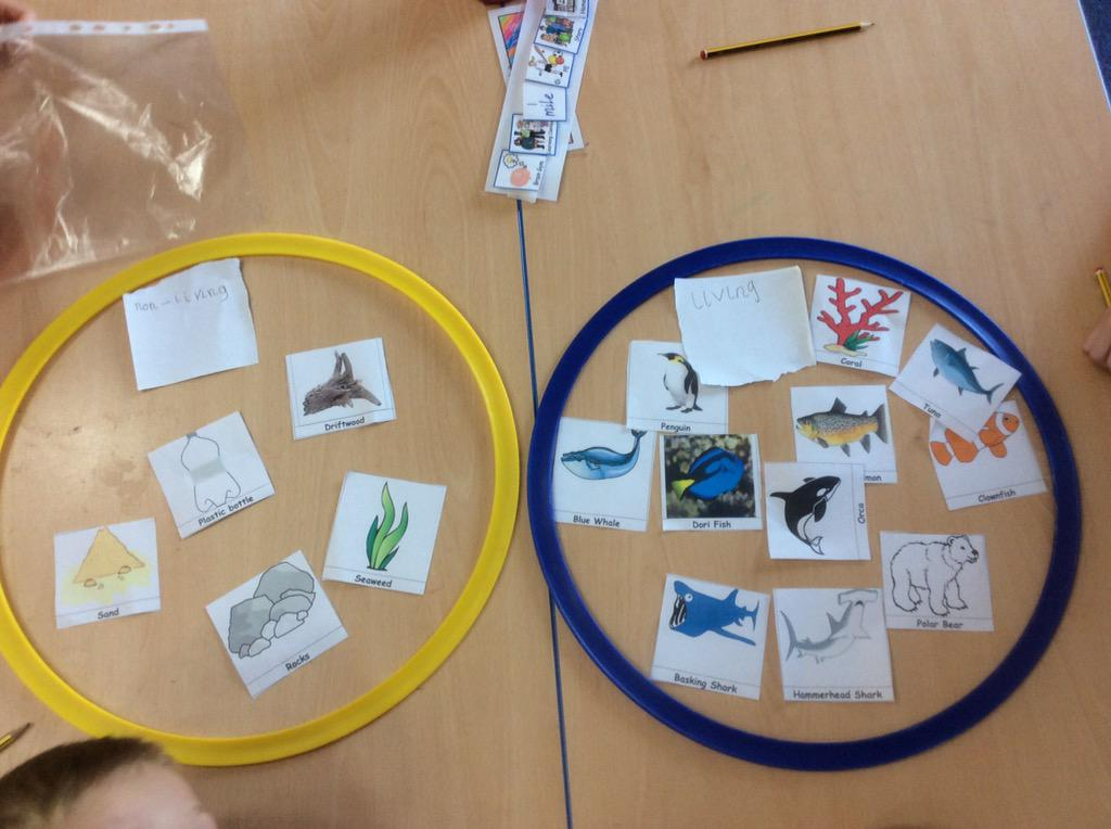 East plean primary on twitter p2 have been sorting living and non 807 am 21 sep 2015 ccuart Images
