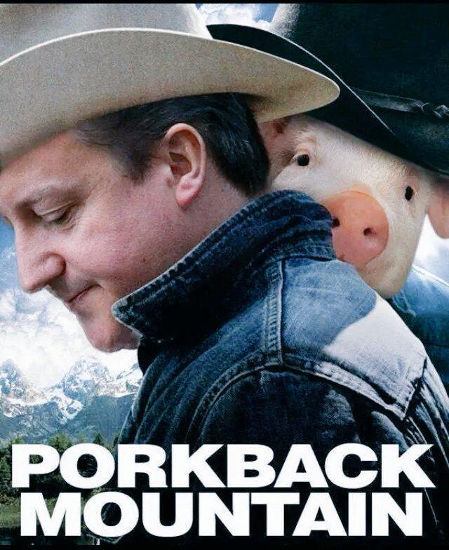 Having lunch reading #DavidCameron jokes. #PigGate is the best thing to happen in Twitter history,so much creativity! http://t.co/VHBZdvjLAU