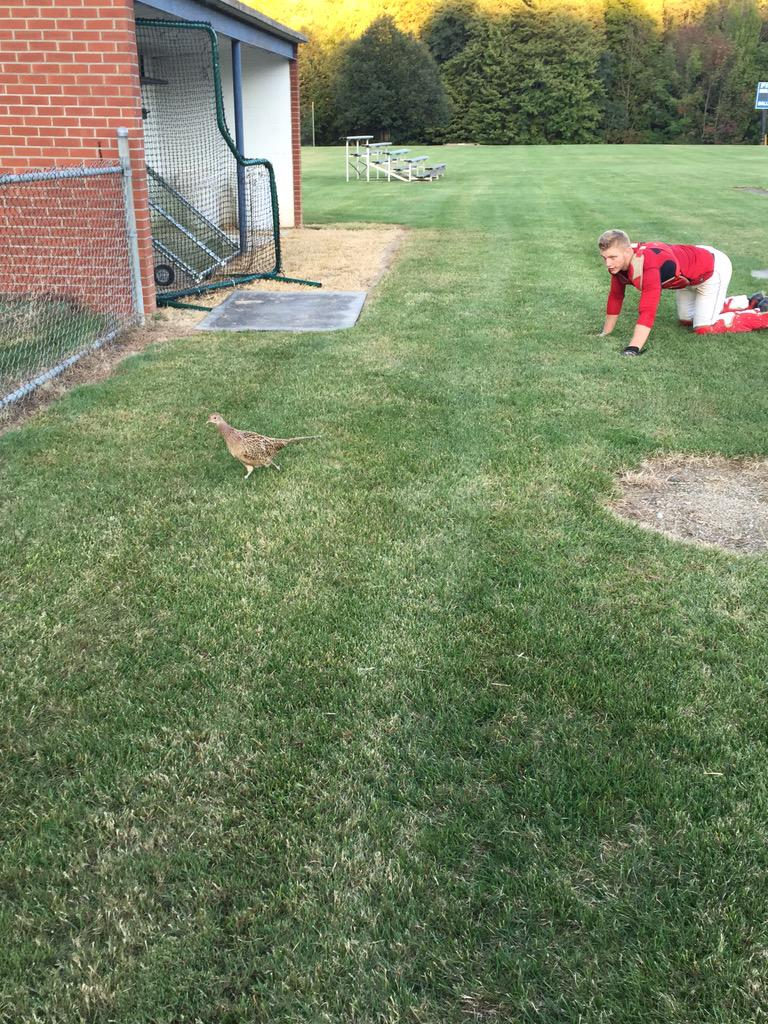 The Terrier baseball team got a new mascot today. It's a new species never before seen. We call it the raptor chicken http://t.co/raaAaRClvM