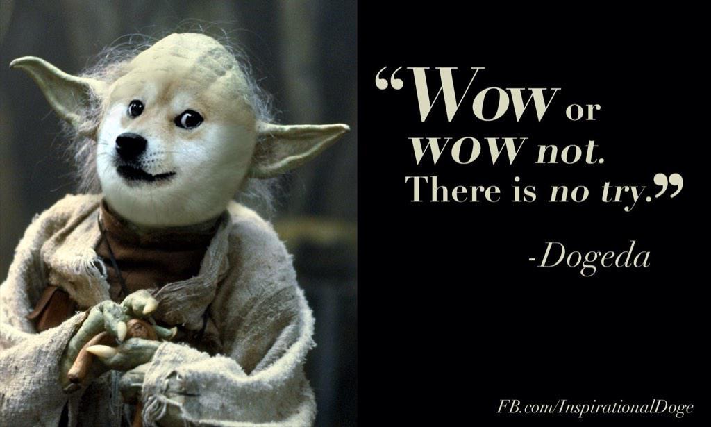 inspirational dog memes