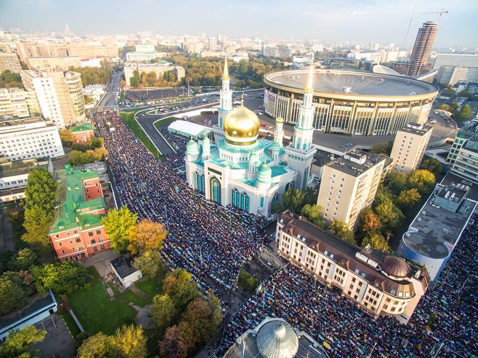 """Порошенко - европарламентариям: """"Поддержка Украины в проведении реформ и восстановлении армии является инвестированием в европейскую безопасность"""" - Цензор.НЕТ 4409"""