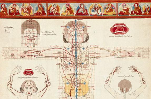 book материалы для истории медицины