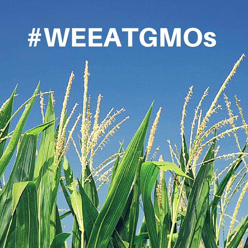 GMO crops are more resistant to bugs, droughts, and floods. #weeatgmos @DrOz https://t.co/QPTt8dBgIg http://t.co/ey89khe50T