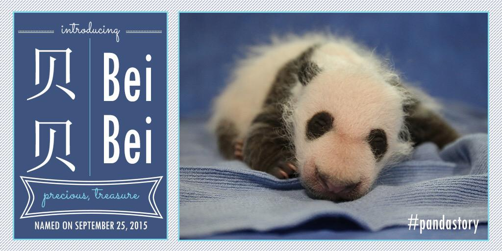 Michelle Obama Gave The National Zoo's Newborn Panda His Official Name