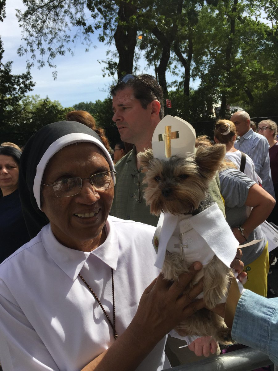 Pup Francis aka #SchmittyTheWeatherDog greets heavenly humans waiting in line to see the #PopeinNYC ! #dogsoftwitter http://t.co/eMWqxAKgPO