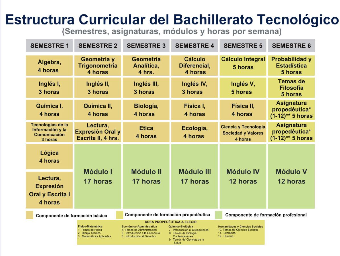 Cbtis213 On Twitter Estructura Curricular Del Bachillerato