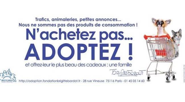 Flash bis -  ANIMALERIE – UNE CAMPAGNE ÉTONNANTE DANS LE METRO PARISIEN http://t.co/4NTVcgVAmE