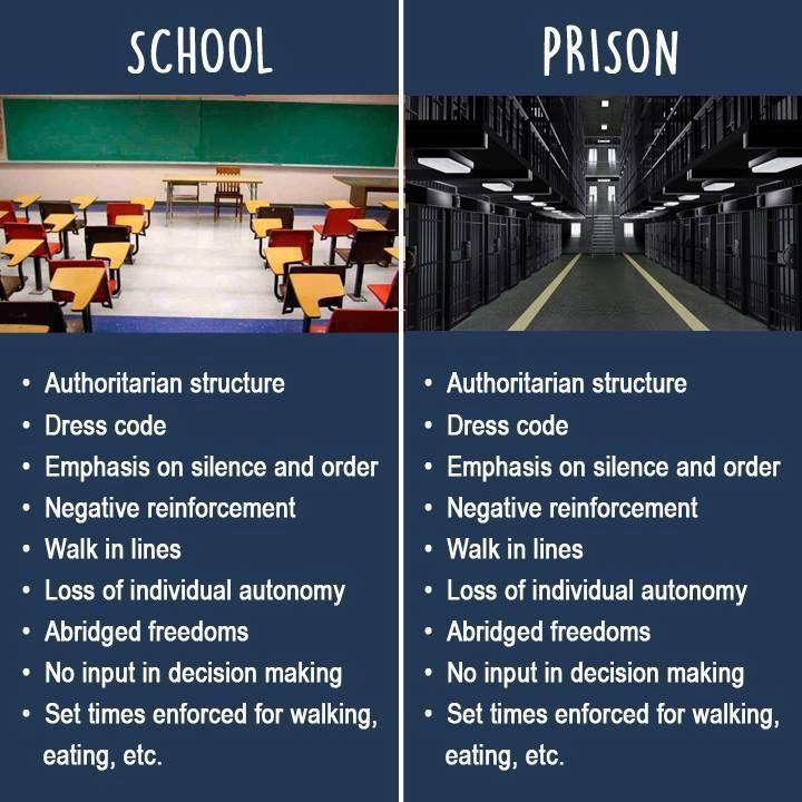 Economics what is the difference between an academy and a school