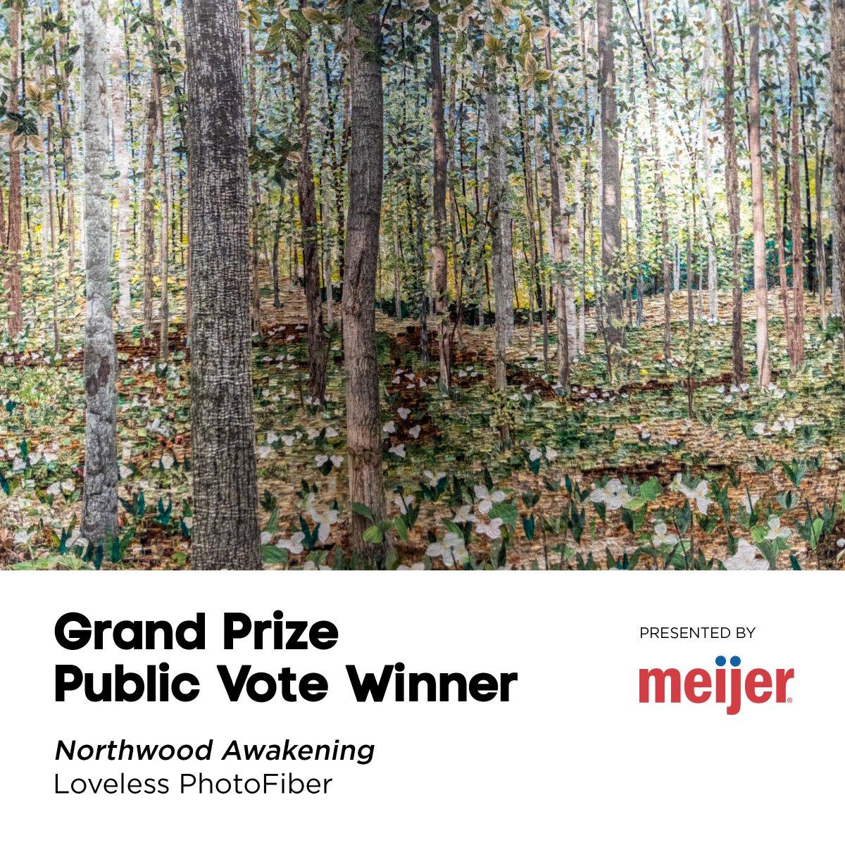 The winner of the #ArtPrize7 Public Vote $200,000 Grand Prize: http://t.co/f2Zgv40xVD