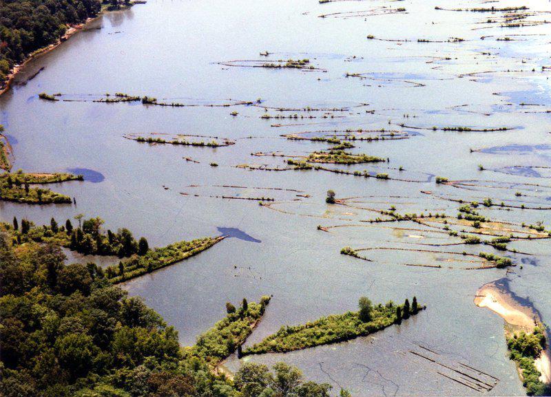 アメリカ海洋大気庁によって新たな海洋保護区に認定された南北戦争~第一次世界大戦時代の廃船が沈むマローズ湾の船の墓場。歴史的価値が評価smithsonianmag.com/science-nature…船上に木々が生い茂り、まるで島のように pic.twitter.com/YCpXZRmV7P