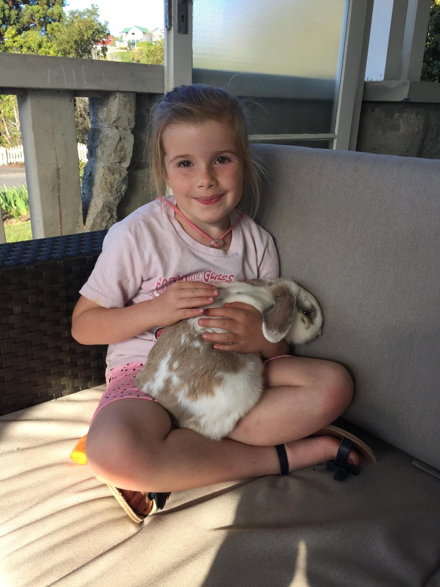 FOUND PET: one bunny on Napier Hill. Being well looked after. Hopped past our house! Please RT. #foundpet http://t.co/sH6fJT9Xab