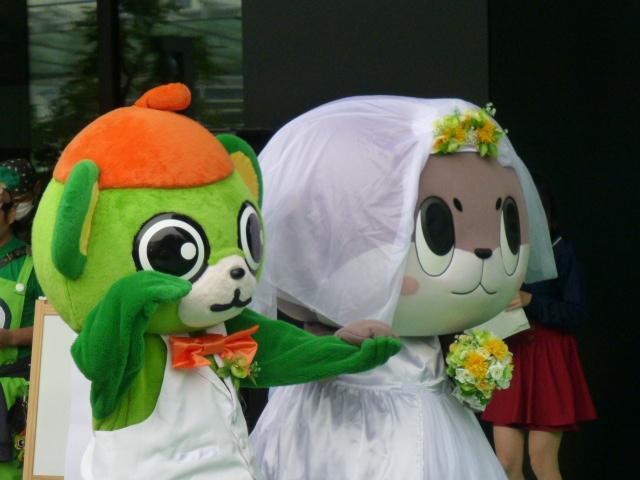 しんじょう君の花嫁姿にデレデレのイッちゃん☆ http://t.co/vMEscxny3X