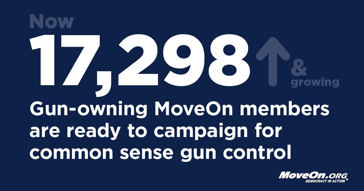 commonsense control not gun control essay