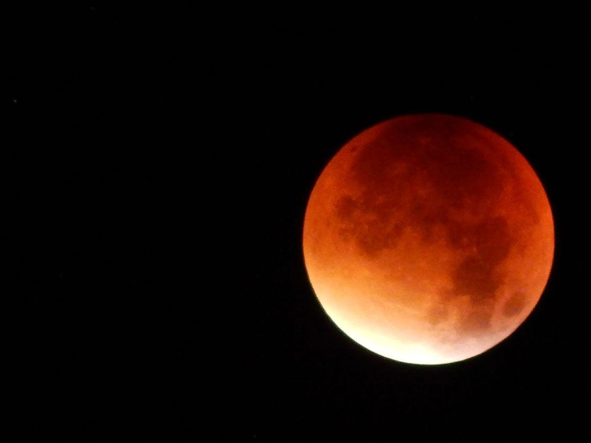Missed the #LunarEclipse? Don't worry! There are already over 60 photos available on Commons: http://t.co/z6eP8WYxdl http://t.co/AEgO2BW1Uk