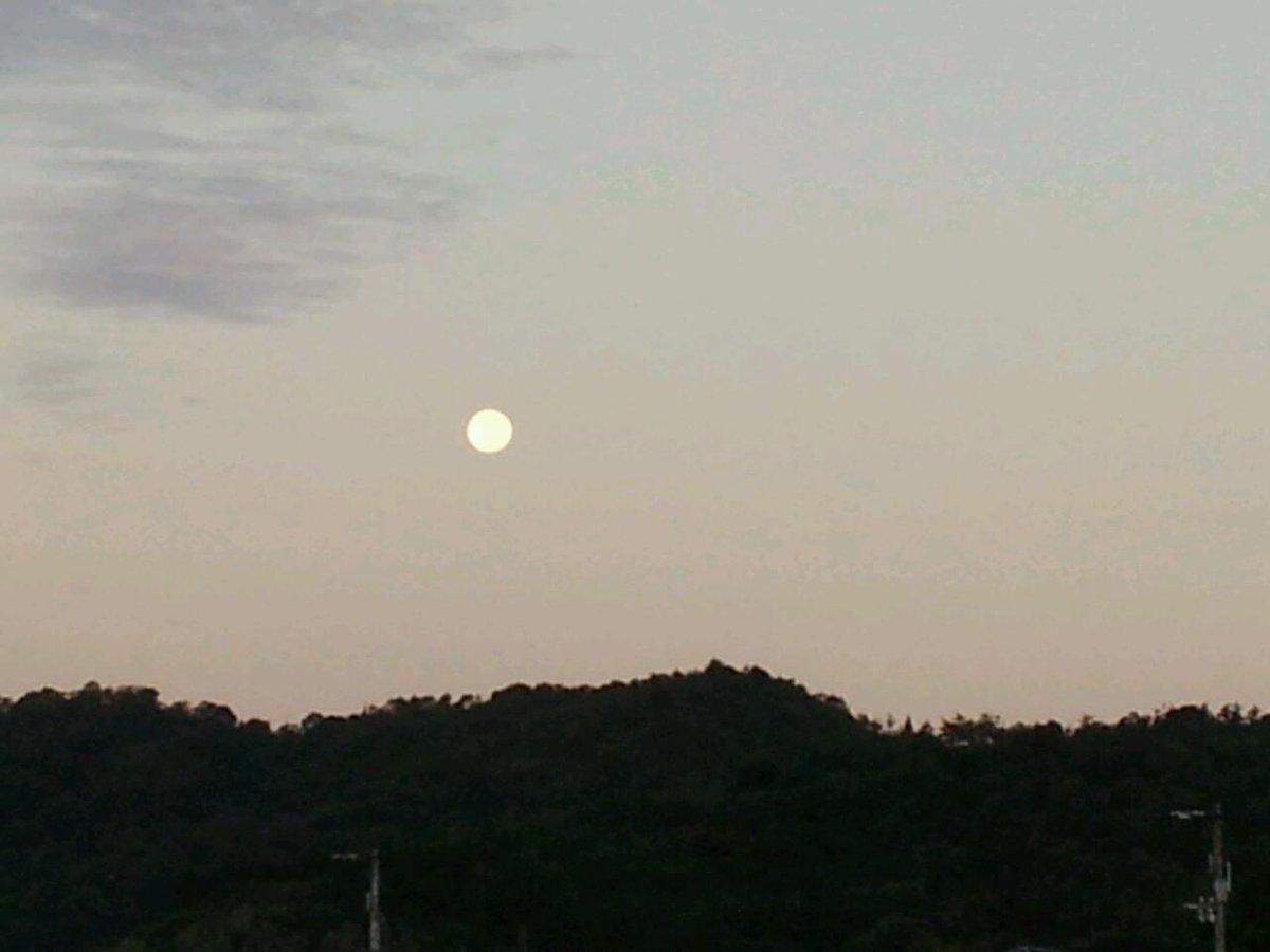 朝もきれい http://t.co/nmGYTt9QIW
