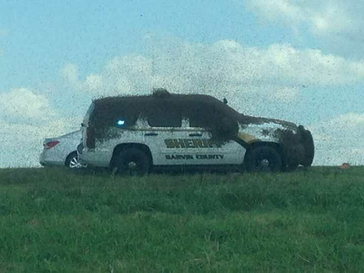 Bees everywhere! News 9 viewer shared these photo of bees covering Garvin County Sheriff's vehicle after accident. http://t.co/UYZOqv6vT0