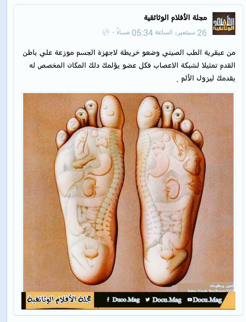 خريطة جسم الانسان في القدم Kharita Blog